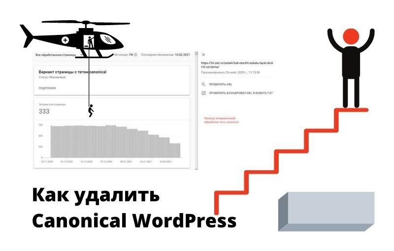 Как удалить Canonical WordPress(1)